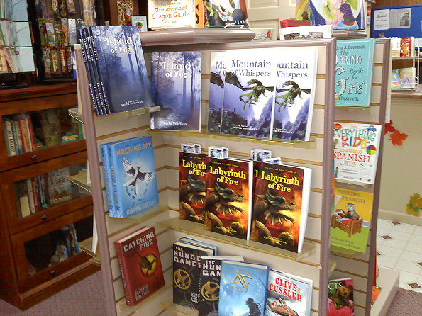 Book display at Books Never-Ending in Rossville